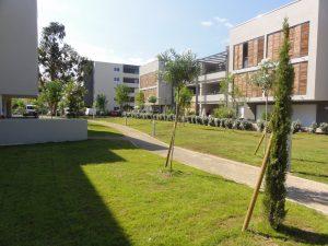 Paysagiste et entretien de jardin à Fréjus - Réalisation d'un parc paysagé