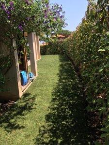 Paysagiste et entretien de jardin à Fréjus - Pose de gazon plaques